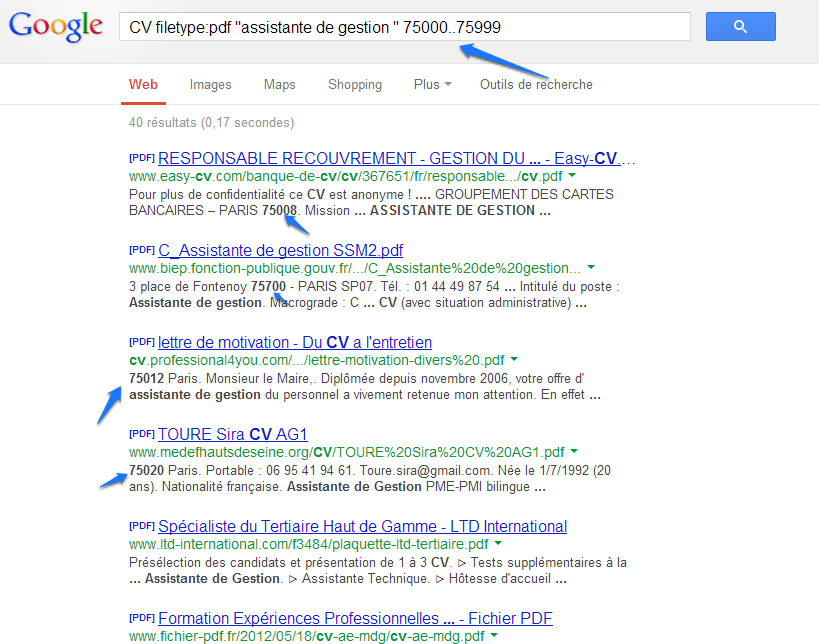 Dompter Google Search 11