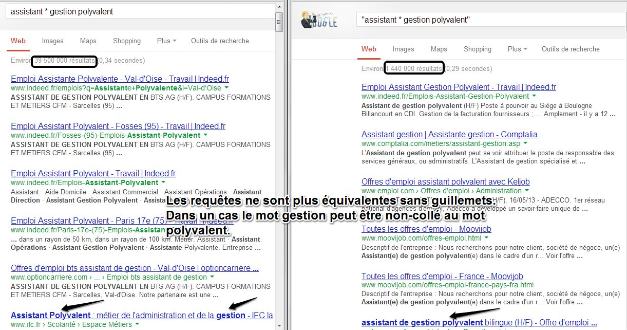 Dompter Google Search (2)