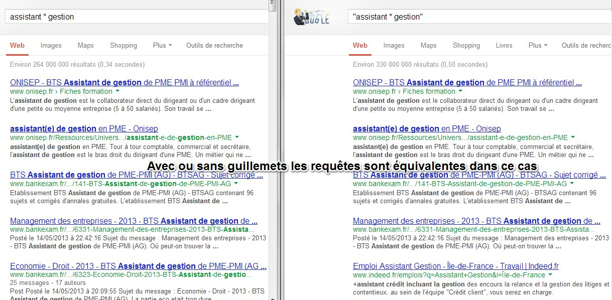 Dompter Google Search (3)