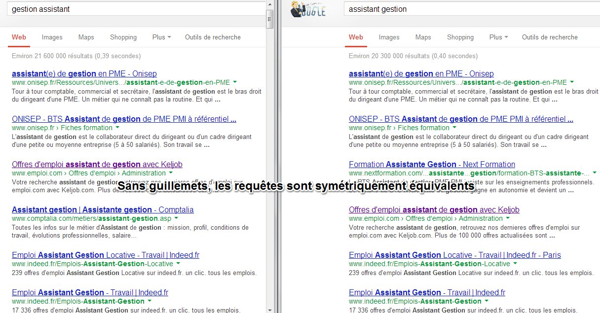 Dompter Google Search (4)