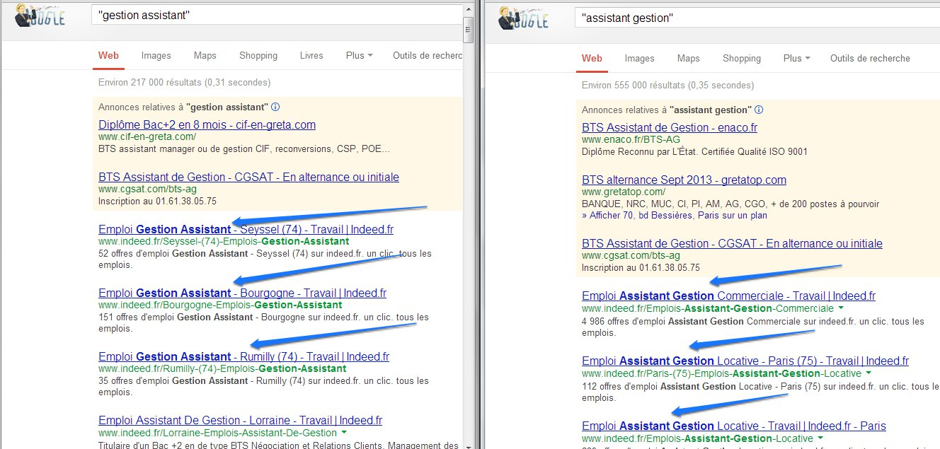 Dompter Google Search (5)