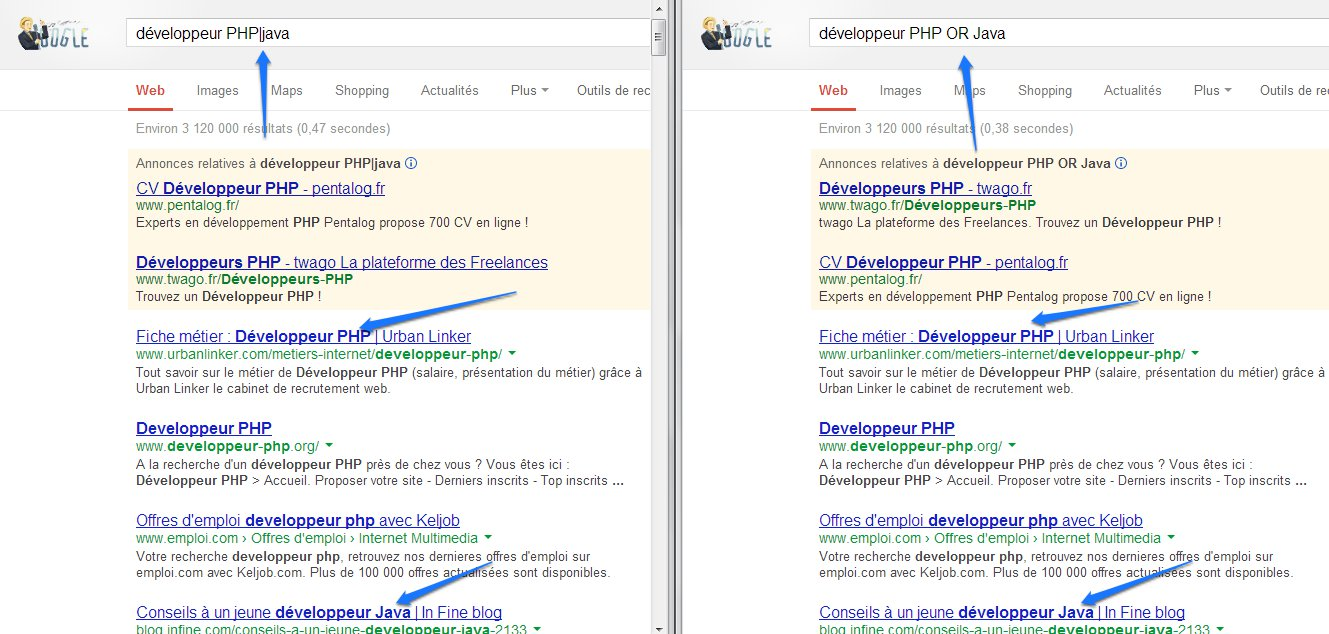 Dompter Google Search (6)
